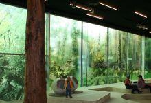 Transparante raamfolie (3) groot, groen, glaswand, natuur